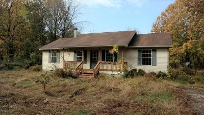 Williamson County Single Family Home For Sale: 405 Madison
