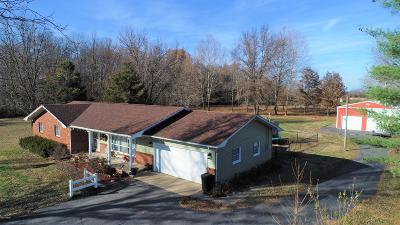 West Frankfort Single Family Home For Sale: 13399 S County Line Road