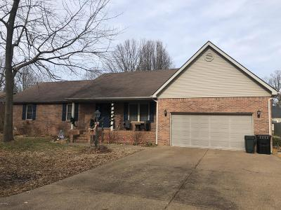 Massac County Single Family Home For Sale: 5 Northview Estates