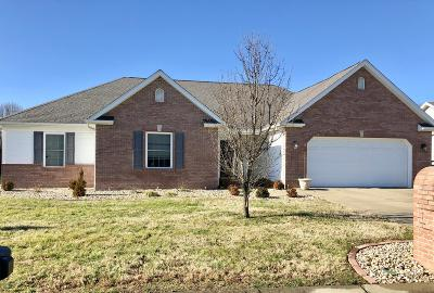 Jackson County, Williamson County Single Family Home For Sale: 1306 Arbicola Drive