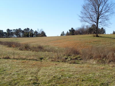Massac County Residential Lots & Land For Sale: Marion Road