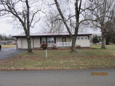 Massac County Single Family Home For Sale: 26 Jon Street