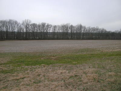 Harrisburg Residential Lots & Land For Sale: Pear Street