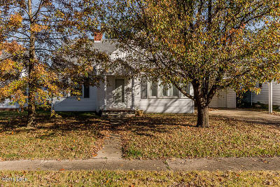 Herrin Single Family Home For Sale: 412 S 12th Street