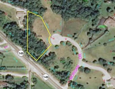 Residential Lots & Land For Sale: Lot 1 Morgan Drive 1