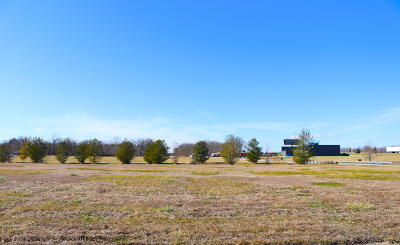 Williamson County Residential Lots & Land For Sale: Landing Drive #18&19