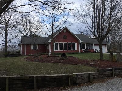 Cobden Single Family Home For Sale: 2815 Kaolin Road