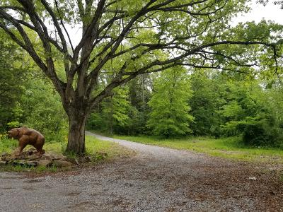 Pope County Residential Lots & Land For Sale: 174 Hazel Road