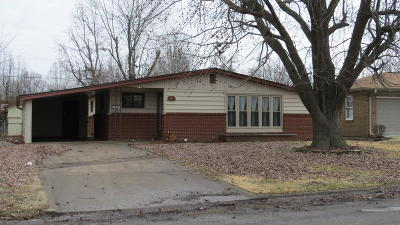 Herrin Single Family Home For Sale: 352 Park Lane