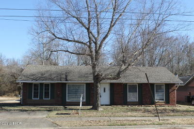 Herrin Single Family Home For Sale: 618 N 29th Street