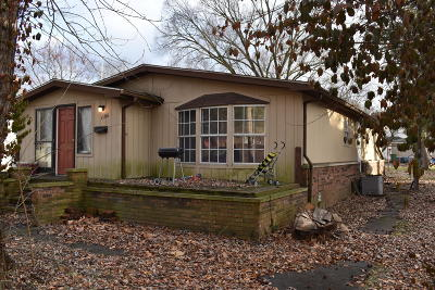 West Frankfort Single Family Home For Sale: 1104 E Lindell Street