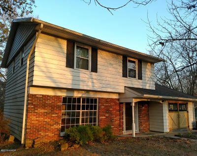 Carbondale Single Family Home For Sale: 333 S Hunt Road