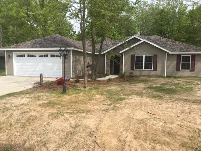 Carterville Single Family Home For Sale: 410 Noah Lane