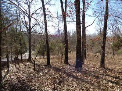 Pope County Residential Lots & Land For Sale: Old Golconda Road