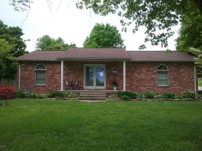 Cobden Single Family Home For Sale: 1525 Kaolin Road