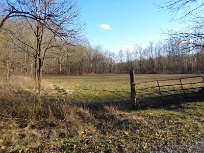 Residential Lots & Land For Sale: Pauper Farm Rd