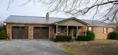Massac County Single Family Home For Sale: 2258 Pell Road