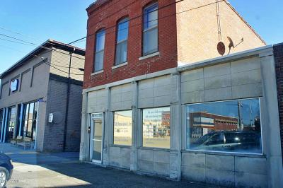 Massac County Commercial For Sale: 508 Market Street