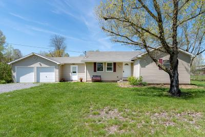 Carterville Single Family Home For Sale: 9629 Rt 148