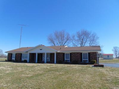Murphysboro Single Family Home For Sale: 10188 Highway 127