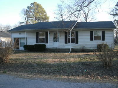 Carrier Mills IL Single Family Home For Sale: $59,900