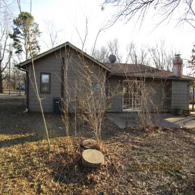 Murphysboro Single Family Home For Sale: 145 Hiser Road