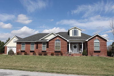 Carterville Single Family Home For Sale: 1404 Nicole Lane