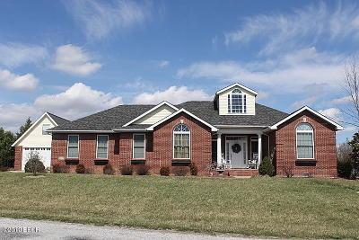 Williamson County Single Family Home For Sale: 1404 Nicole Lane