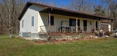 Single Family Home For Sale: 145 S Iron Furnace Road