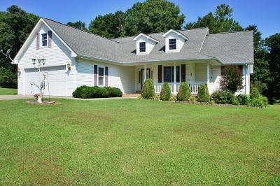 Massac County Single Family Home For Sale: 67 Krueger Lane