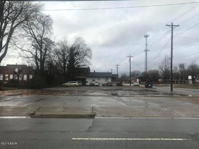 Massac County Commercial For Sale: 721 Ferry Street