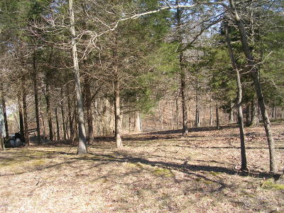 Johnson County Residential Lots & Land For Sale: Sweet Gum Lane