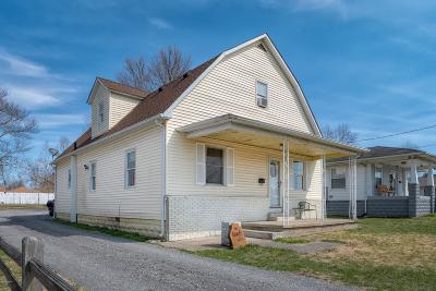 Johnston City Single Family Home For Sale: 508 W Broadway Boulevard