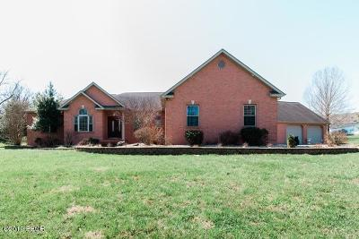 Carterville Single Family Home For Sale: 129 Jeremy Drive