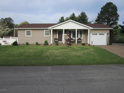 Massac County Single Family Home For Sale: 2101 Greenview Drive
