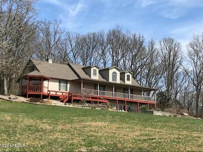 Goreville Single Family Home For Sale: 1870 Lick Creek