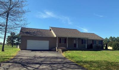 Massac County Single Family Home For Sale: 56 Woodland Drive