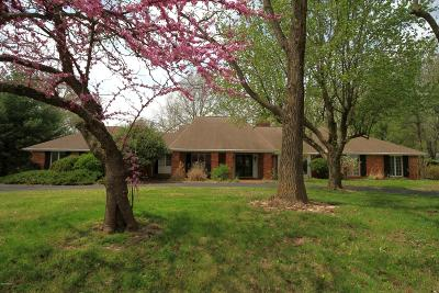 Carbondale Single Family Home For Sale: 31 W Pinewood Drive