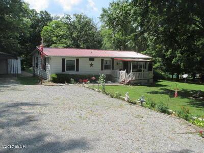 Cobden Single Family Home For Sale: 119 Casper Avenue