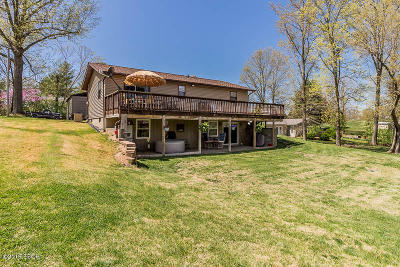 Creal Springs Single Family Home For Sale: 168 County Line Drive