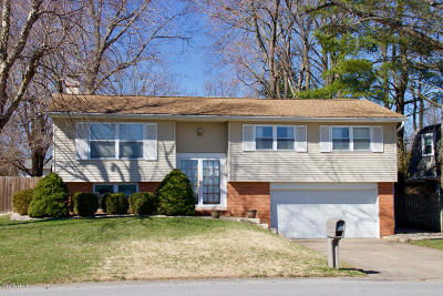 Carbondale Single Family Home For Sale: 114 N Parrish Lane