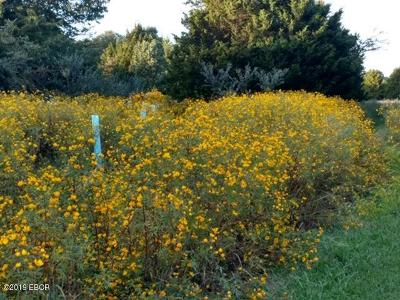 Johnson County Residential Lots & Land For Sale: 222 Holland Lane #94