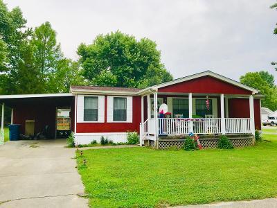 Williamson County Single Family Home For Sale: 208 Virginia Street