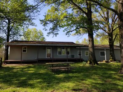 Johnston City Single Family Home For Sale: 14147 Corinth Road