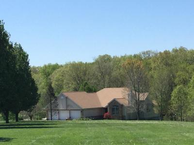 Cobden Single Family Home For Sale: 4620 Wing Hill Road