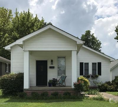 Massac County Single Family Home For Sale: 208 E 3rd Street