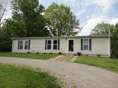 Goreville Single Family Home For Sale: 35 Thunderhead Drive