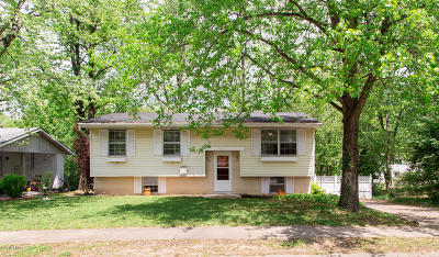 Carbondale Single Family Home For Sale: 1010 W Willow Street