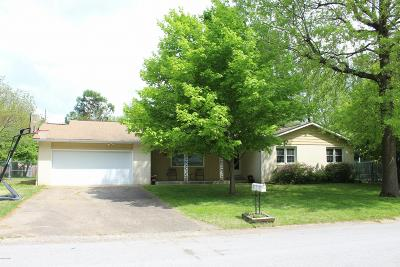 Carbondale Single Family Home For Sale: 1707 W Colonial Drive