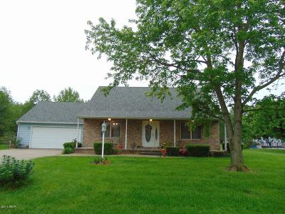 Murphysboro Single Family Home Active Contingent: 154 Brian Avenue